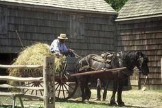 Amish life in Elkhart county Indiana