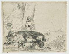The hog - Rembrandt - Completion Date: 1643