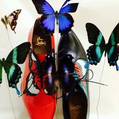 The Butterfly Effect Chrysolido, Louboutin Dream Shoes, Me Too Shoes, Women's Shoes, Butterfly Shoes, Butterfly Kisses, All About Fashion, World Of Fashion, High Fashion, Colors
