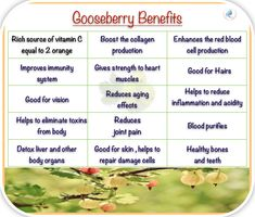 Gooseberry Benefits on skin, health and hairs. Vitamin C, Collagen, Health Care, Beauty Hacks, Hair Care, Remedies, Skincare, Tips, Hair Care Tips