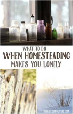 What to do when Homesteading makes you lonely