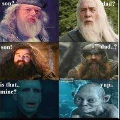 Dumbledore (Richard Harris) Totally Looks Like Gandalf ...