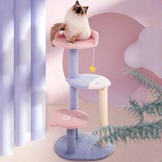 Ocean View Cat Climbing Tree Cat Climbing Tree, Underwater Animals, Cat Perch, Cat Towers, Cat Condo, Cat Scratcher, Cat Room, Kawaii Cat, Cat Accessories