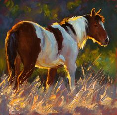 "Cheri Christensen, ""Paint in the Evening"" 8 x Oil, Eisenhauer Gallery of Edgartown, MA Animal Paintings, Horse Paintings, Pastel Paintings, Horse Oil Painting, Horse Artwork, Horse Drawings, Equine Art, Animal Sculptures, Wildlife Art"