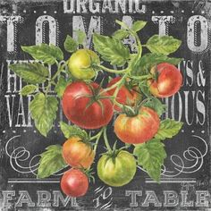 Fall marks the end of tomato season. Today I thought we would pay tribute to the tomato, tomato dishes, tomato sauce and growing tomatoes. TODAY WE PIN THE TOMATO... NO RECIPES PLEASE.