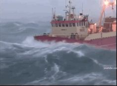 Funny pictures about Those Sure Are Rough Seas. Oh, and cool pics about Those Sure Are Rough Seas. Also, Those Sure Are Rough Seas photos. Giant Waves, Big Waves, Rough Seas, Weird Gif, Stormy Sea, Arctic Circle, Gif Of The Day, Gif Animé, Sea And Ocean