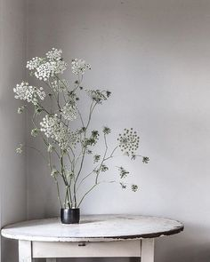 Morning beauty (@the_dailys in #dsfloral - designsponge)