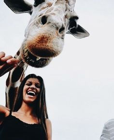 A giraffe got its portrait shot photographed but only to have a woman photobomb it. Animals And Pets, Baby Animals, Cute Animals, Cute Creatures, Beautiful Creatures, Animals Beautiful, Photo Voyage, Amor Animal, Foto Top