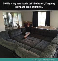 Funny pictures about The Couch Of My Dreams. Oh, and cool pics about The Couch Of My Dreams. Also, The Couch Of My Dreams photos. Really Funny Memes, Funny Relatable Memes, Stupid Funny, Hilarious, Modul Sofa, My New Room, My Dream Home, Future House, Funny Pictures