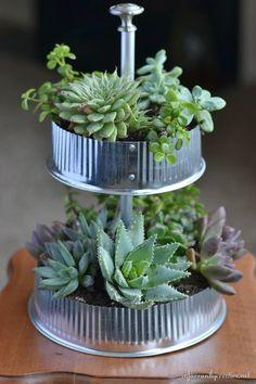 DIY Industrial Tiered Tabletop Succulent Garden Tutorial from Infarrantly Creative