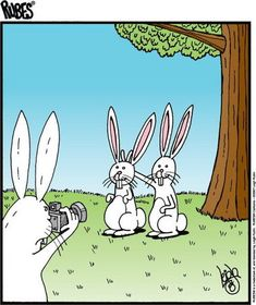 funny hilarious Nationally syndicated cartoonist Leigh Rubin brings his offbeat world view back to Staten Island Funny Cartoons, Funny Comics, Funny Jokes, Hilarious, Easter Cartoons, Funny Gifs, Far Side Comics, Far Side Cartoons, Frases