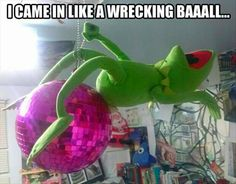 Funny pictures about Wrecking Kermit. Oh, and cool pics about Wrecking Kermit. Also, Wrecking Kermit. Lol, Haha Funny, Funny Cute, Funny Shit, Funny Memes, Funny Stuff, Funny Things, Freaking Hilarious, Funny Captions
