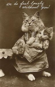 Is Harry Whittier Frees the pioneer behind cat photo memes? YOU BE THE JUDGE. Click for more.