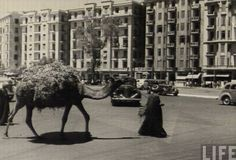 Hahrir Square by Life Magazine, circa 1940's