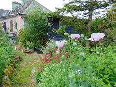 permakulturní zahrada pro inspiraci - nádhera