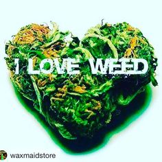 #Repost @waxmaidstore with @repostapp  ・・・  we all do love weed!#waxmaid #magneto #waxmate #weedporn #hash #weedstagram420 #ganja #dank #hightimes #herb #cannabisculture #wax #dab #dabs #dablife #dabbing #oil #710society #lowtemp #CBD #weeding #weedlife #weed420feed #stoners    #Regram via @mothershipbong)