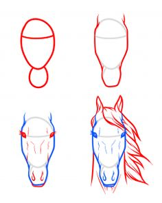 Easy way to draw a horse head.