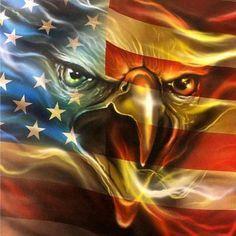 Patriotic Pictures, Eagle Pictures, American Flag Wallpaper, American Flag Eagle, American Freedom, American Indians, Eagle Art, I Love America, America Pride