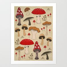 Mushrooms Art Print by Lynette Sherrard Illustration and Design - $18.72