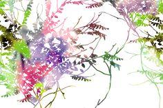 Carta da parati Glamora - Ghost Garden
