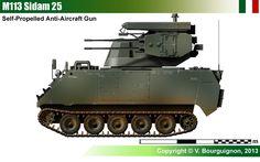 M113 Sidam 25