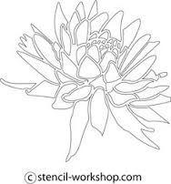 Картинки по запросу dahlia illustration