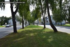 Topeliusesplanaden, Nykarleby - Uusikaarlepyy Finland, Sidewalk, Plants, Sidewalks, Plant, Pavement, Walkways, Planting, Planets