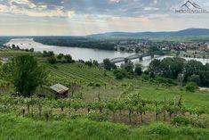 Wachau: Welterbesteig Etappe 1 – von Krems nach Dürnstein Vineyard, Mountains, Nature, Travel, Outdoor, Vine Yard, Ruins, Hiking, Outdoors