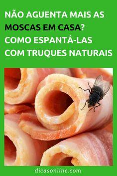 Espantar moscas - Dicas Caseiras Green Christmas, Interior Design Kitchen, Clean House, Home Remedies, Cleaning Hacks, Fruit, Health, Tips, Food