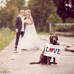 love  https://www.facebook.com/ExclusivelyWeddings?sk=timeline