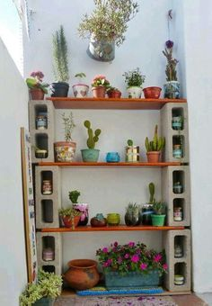 Plantas bloques