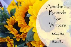 Aesthetic Boards for Writers - A Guest Post by Harley Rae