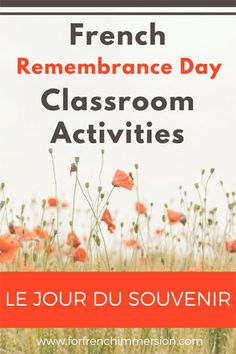 French Remembrance Day Classroom Activities: list of videos, free printables, and crafts – pour le jour du Souvenir!