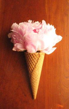 "Ice Cream Cone Peony with a ""Cherry"" on Top (2011)"