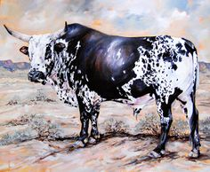 """Terry Kobus - Nguni Cattle Paintings - """"Nguni Bull Kalahari"""" Oil on Canvas 900 x… Wildlife Paintings, Animal Paintings, Bull Painting, Bucking Bulls, Longhorn Cattle, Wooly Bully, Animal Agriculture, South African Artists, Cow Art"""