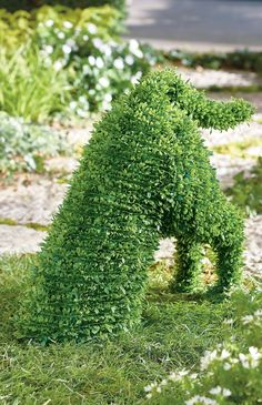 Enjoy the everlasting charm of our Digger Faux Boxwood Garden Dog without ever lifting a finger to prune or water. Durable, lifelike materials mimic healthy, natural boxwood down to the smallest detail, for beauty that lasts season after season. To best maintain integrity over time, Boxwood Dogs are meant for display in a protected outdoor area, beneath a covered entryway or gazebo, for example. Rectangular Planters, Tall Planters, Square Planters, Boxwood Garden, Shows In Nyc, Grandin Road, Frame Display, Lawn And Garden, Garden Oasis