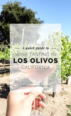 Take a wine tasting day trip from LA to Los Olivos! Discover my tips to wine tasting and where to go in Los Olivos.