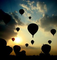 hot air balloons. Want to go up in one of these...