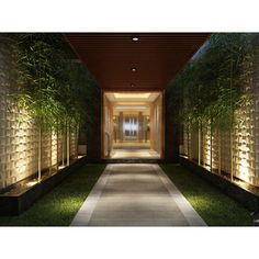Wall Panels Plant Fiber Woven Design Pack of 10 - Overstock™ Shopping - Top Rated Wall Paneling Landscape Lighting, Outdoor Lighting, Outdoor Decor, Plant Lighting, Outdoor Planters, Backyard Patio, Backyard Landscaping, White Plants, 3d Wall Panels