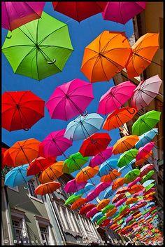 Umbrella Street in Agueda, Portugal Umbrella Street, Umbrella Art, Under My Umbrella, Motion Wallpapers, Colorful Umbrellas, Rainbow Connection, Over The Rainbow, Fall Home Decor, Rainbow Colors