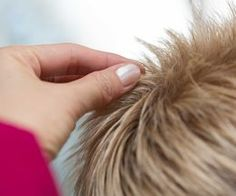 How to Get the Spikey Hair Look for Women | eHow