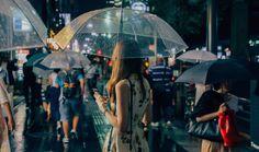 Thibaut Buccellato nous transporte dans un Japon aux couleurs délicates