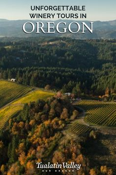 Unforgettable Winery Tours in Oregon Plan your next wine tasting adventure in Tualatin Valley. You'll taste some of Oregon's best estate-grown Pinot Noir Chardonnay and Riesling. Oregon Road Trip, Oregon Travel, Travel Usa, Oh The Places You'll Go, Places To Travel, Travel Destinations, Places To Visit, Vacation Trips, Vacation Spots