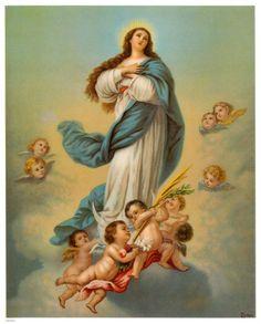 Jesus Fonte de Luz: IMACULADA CONCEIÇÃO DE MARIA