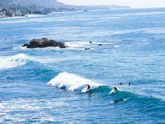 Surfers at Laguna Beach