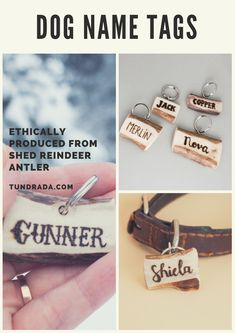 Fancy dog name tags made from naturally shed reindeer antler. These pet ID tags will sure spoil your pup! Dog Name Tags, Pet Id Tags, Angel Wings Decor, Dog Ramp, Reindeer Antlers, Memorial Gifts, Dog Training, Names, Fancy