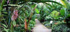 Have a relaxing afternoon & explore the Matthaei Botanical Gardens!