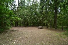Sibbald Point Provincial Park, East Campground, Camping in Ontario Parks Ontario Parks, Toronto, Country Roads, Canada, Camping, Plants, Summer, Campsite, Summer Time
