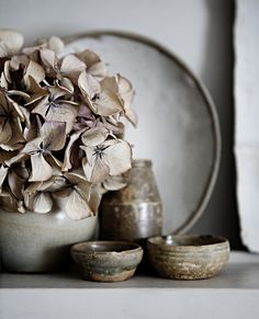 Wabi sabi, this culture is amazing ... learning to see the beauty in imperfection ... ♥ dried flowers