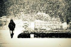 急に雪が降り出したので撮りました。絞り目にして望遠側で撮ることで大雪っぽく撮れたと思います。